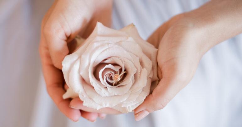 Rose, Ring, Hochzeit, Blush
